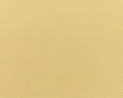 Sunbrella Canvas Wheat 5414 - Outside fabric